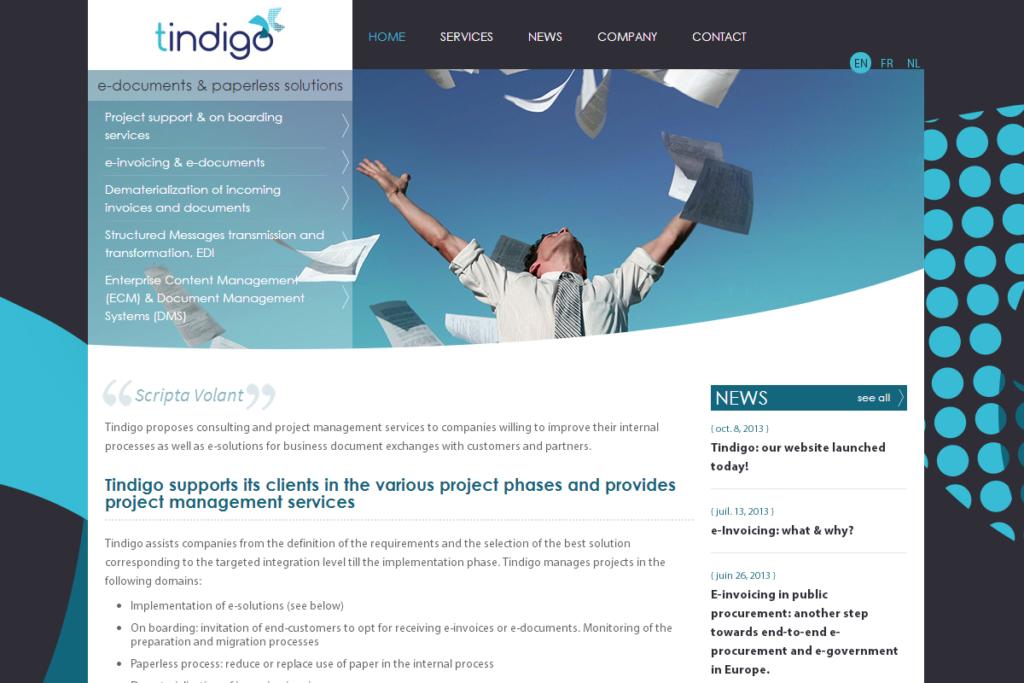 ALYS projet - TINDIGO